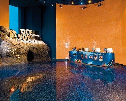 The Georgia Aquarium in Atlanta, GA.
