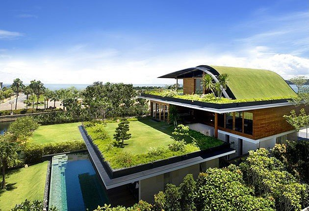 Eco Friendly Design Trends Living Roof