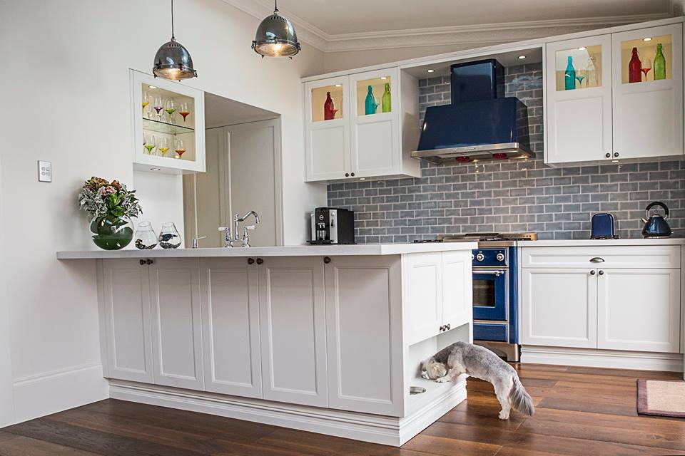 Pet Friendly Kitchen Design Ideas Granite Transformations Blog