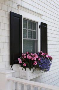 Window Boxes & Shutters